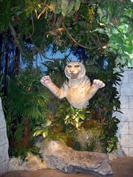 Completed white tiger statuary installation at the Rainforest Cafe