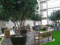 Theme Designs Studios construction crew puts together the Healing Garden for the Willowbrook Methodist Hospital in Houston, Texas.