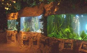 The Kemah Aquarium fishtanks required large amounts of artificial rockwork to be installed