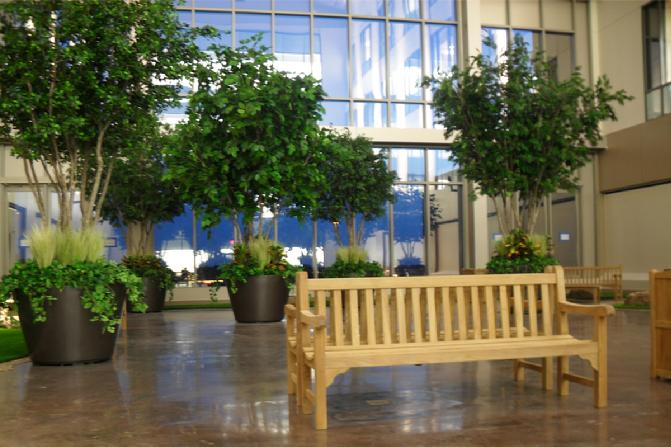 The Willowbrook Methodist Hospital's Healing Garden was designed to give their workers a serene place to rest and rejuvinate after a long day.